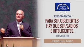 Enseñanza: Para ser obedientes hay que ser sabios e inteligentes - IDMJI - Hno Andrés Carrillo