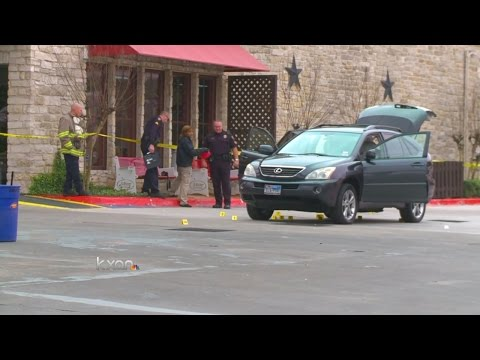 Witness describes Round Rock Police dog shooting