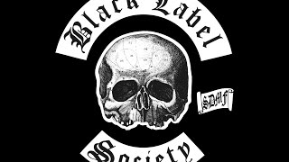 Watch Black Label Society Stronger Than Death video