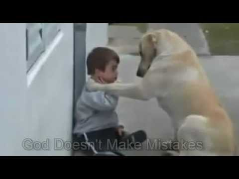 LOVE between a Child and a Dog (So Emotional)