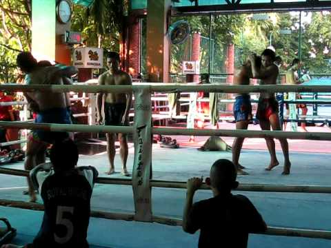 Fairtex Pattaya Muay Thai Training Knees Image 1
