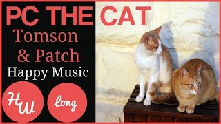 PC The Cat With Tomson & Patch Friends, Children's Music
