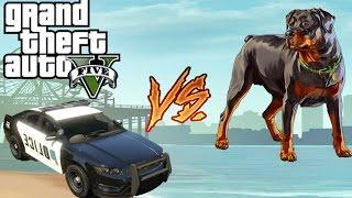 [GAME] GTA 5 DOG VS POLICE!!