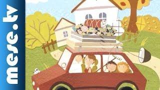 Prágai Tamás: Vadállatok a kabátzsebben - gyermekkönyv ajánló (x)