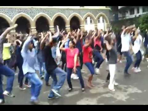 Celebration After Flash Mob, Wilson College Bms Mumbai video
