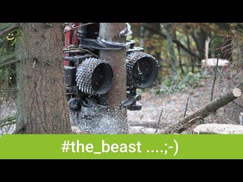 """""""The Beast"""" - Blick hinter die Kulissen der Sauerländer Forstwirtschaft - glücklichTV"""