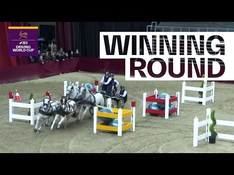 Ijsbrand Chardon's hard work pays off in Budapest   FEI Driving World Cup™