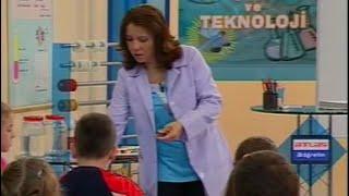 Fiziksel Olaylar, Kuvvet ve Haraket 1 - İlköğretim 5. Sınıf Fen ve Teknoloji