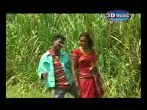 Gondi Song 2 video