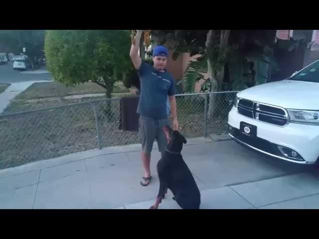 Got EM!!