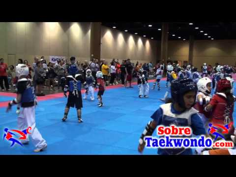 Taekwondo training. Sparring Image 1