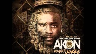 Watch Akon Salute 100 Yall video