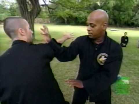 Animal Planet: Segment 7 - Southern Praying Mantis Kung Fu