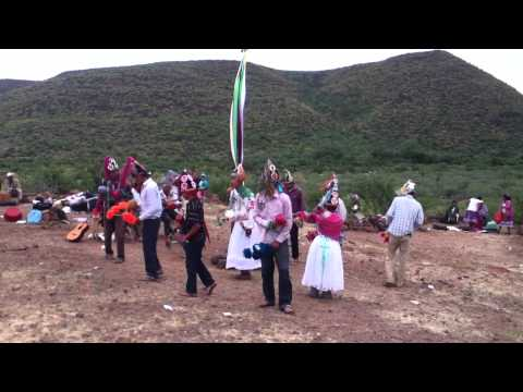 matachines de potam sonora
