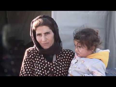 Kolęda Syryjskich I Polskich Rodzin - Jezus Malusieńki - Caritas Polska