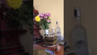 Lễ cúng họ Nguyễn Văn làng An Lai xã Trường Giang