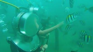 download lagu Bali , Indonesia Gopro Sea Walker / Flying Fish gratis