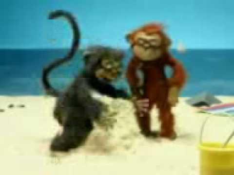 Monyet brengsek.3gp