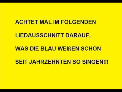 Schalke Verarscht Sich Selbst!!!   Sporter TV   All About Sport