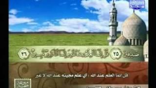 التلاوات المختارة | مصطفى اللاهوني ( سورة الملك والقلم )