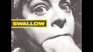 Download Lagu Swallow - Zoo Gratis STAFABAND