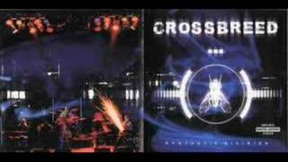 Watch Crossbreed Breathe video