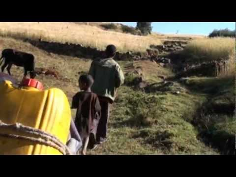 Ethiopia - Wokin Village Nov. 2012 - Children's daily Water Trip
