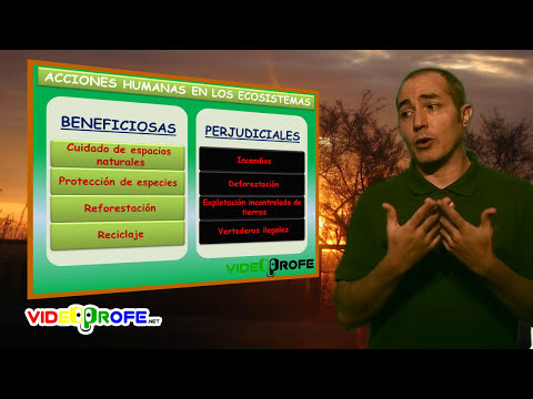09. Tipos de ecosistemas. 5º Conocimiento del Medio. Videoprofe.net