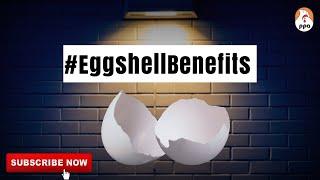 #EggshellBenefits