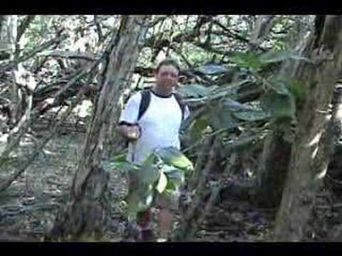 Hike to Captain Cook's Monument on Kealakekua, Big Island, Hawaii