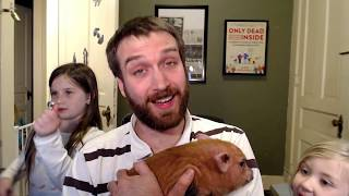 Meet My New Baby Pig