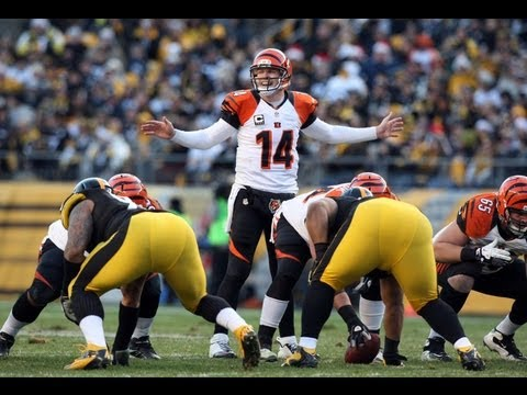 2012-2013 NFL Playoff Picture! Bengals bounce Steelers! One Week Left to Go, Who's In? Who's Out?