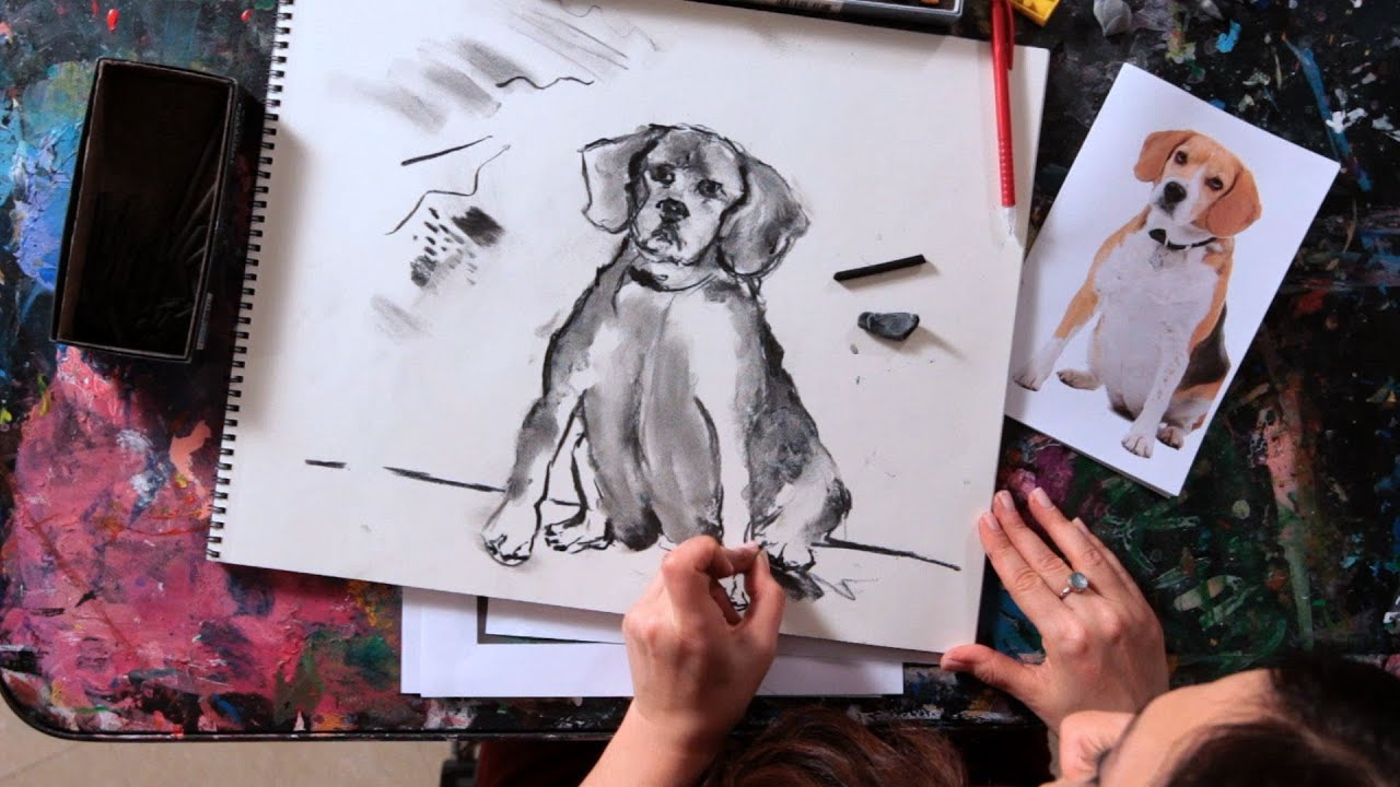 Drawing Sketching Techniques How to Sketch a Dog | Drawing