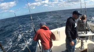 WAHOO AND TRIPLE SAILFISH ACTION
