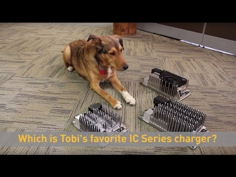 Dogs of Delta-Q: Tobi's Favorite IC Series Charger