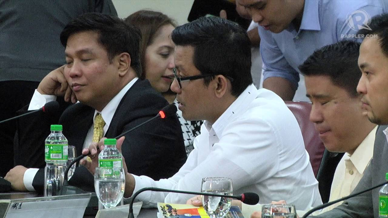 House minority wants panel to recommend filing charges vs De Lima