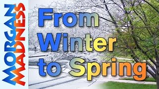 From Winter To Spring - A Swinter Time Lapse