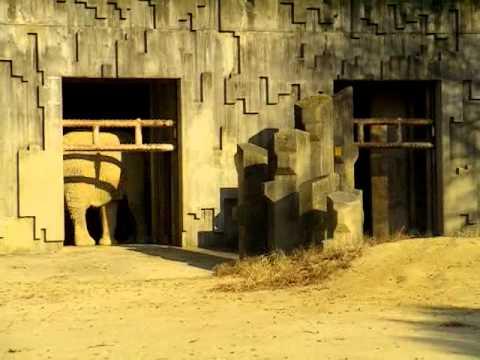 Elephant at Nagoya Zoo 名古屋の東山動物園