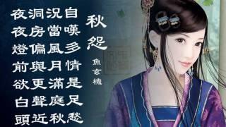 林海 Lin Hai 琵琶語 Pipa Language Feat 唐代才女