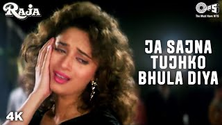Jaa Sajna Tujhko Bhula - Raja | Madhuri Dixit & Sanjay Kapoor | Alka Yagnik & Udit Narayan