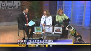 LAC - Pet Allergies
