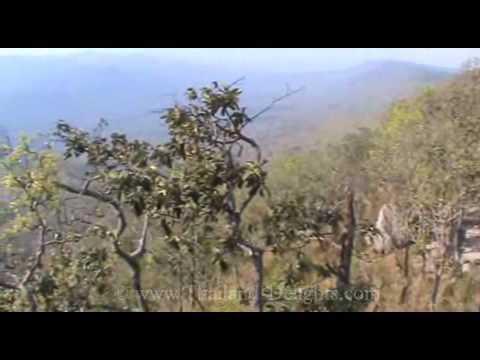 Pa Hin Ngam National Park, Thep Satid Post  Amphur Thep Sathit, Chaiyaphum, Thailand ( 5 )