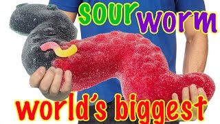 GIANT SOUR WORM RECIPE How To Cook That Ann Reardon Slither.io