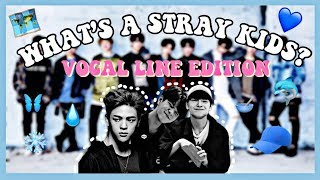 Download Lagu A VERY NECESSARY GUIDE TO » STRAY KIDS VOCAL LINE Gratis STAFABAND