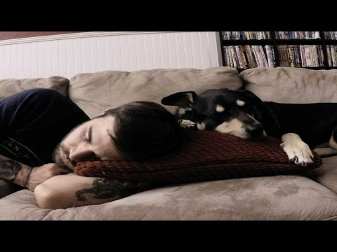 Cute Sleeping Time Lapse With Dog!