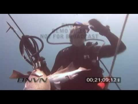 9/16/2006 Spear fishing Video