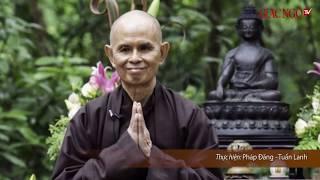 Phim tư liệu tóm tắt Cuộc đời của Thiền sư THÍCH NHẤT HẠNH - Sư ông Làng Mai