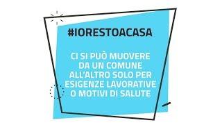 Il Trentino News - Puntata 08-2020