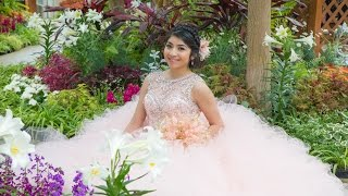 Karina Quinceañera Highlights