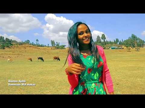 Ethiopian Music : Alamuu Ajabii (Dammaan Wal makaa) New Ethiopian Oromo Music 2019(Official Video) thumbnail
